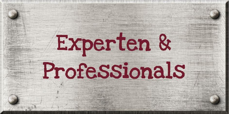 Wir suchen Experten und Professionals